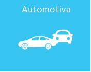 Segmento - Automotiva